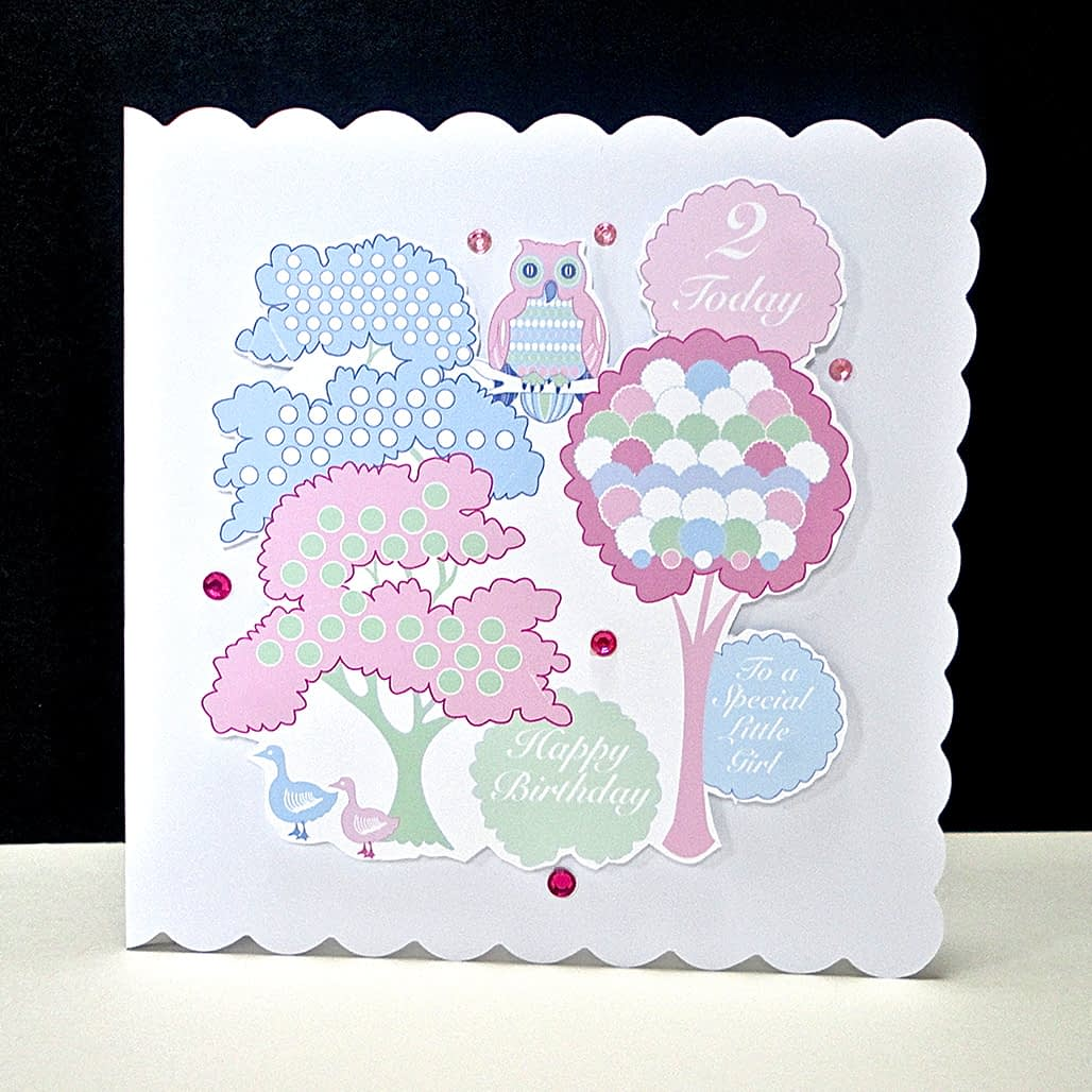 Pink Wise Owl Second Birthday Card