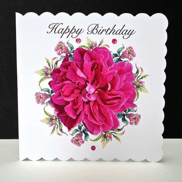 Cerise Rose Handmade Happy Birthday Card