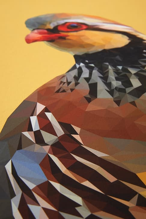 A detail of the digitally-created partridge drawing.
