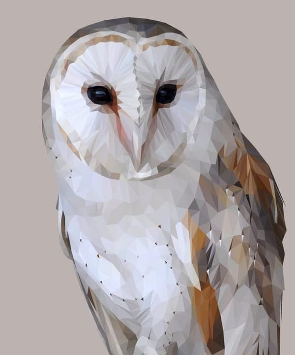 A digitally-rendered barn owl print with a pale grey background.