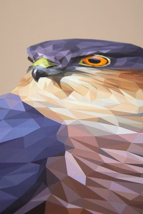 A detail of the digitally-created bird of prey drawing.